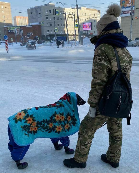 Lạnh kỉ lục âm 40 độ, nước Nga những ngày này ra sao? - Ảnh 3.