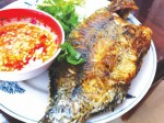 Những điều cần biết khi ăn cá rô phi để tránh bị nguy hiểm