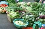 Cảnh báo tồn dư thuốc bảo vệ thực vật trong các loại rau quả