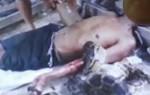 Bỏ đói trăn khổng lồ dài 6.5m trong nhà, người đàn ông bị siết cổ đến chết