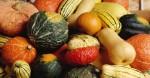 my-thu-hoi-hon-200-000-qua-trung-vi-nghi-nhiem-khuan-salmonella