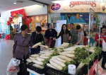 """Hàng loạt siêu thị ra tay """"giải cứu"""" củ cải cho nông dân"""