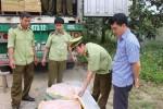 Xe container chở 5 tấn nầm lợn thối đang trên đường vào Nam tiêu thụ
