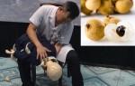 video-khoanh-khac-lo-phan-ung-hat-nhan-duc-do-sup-sau-hang-loat-tieng-no