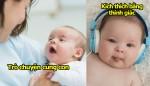 khong-can-gi-cao-sieu-tre-se-doc-lap-tu-nho-neu-duoc-chi-cho-10-meo-nho-nay