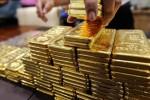 Giá vàng hôm nay 26/9: Vàng tăng trước cuộc họp của Fed