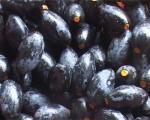 Trám đen xứ Lạng giá cao kỉ lục, tranh nhau mua vì ngon... quên sầu