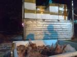 Bắt giữ gần 2 tấn thịt chim cút 'bẩn' ở Sài Gòn