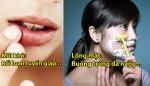 4-bi-quyet-song-khoe-va-truong-tho-chi-tu-nhung-hanh-dong-don-gian