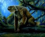Những bí ẩn trong rừng rậm Amazone đến nay vẫn chưa được giải đáp