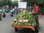 cam-sanh-loan-gia-co-noi-ban-gan-tram-nghin-kg