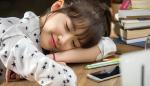 Khoa học chứng minh 30 phút ngủ trưa mang lại lợi ích đủ đường