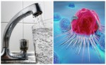 Nước máy nhiễm độc có thể khiến người dùng bị ung thư