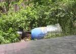 Vụ giấu xác trong thùng bê tông: Hung thủ dùng silicon và trà ướp xác