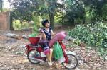 'Nữ hoàng cảnh nóng' Việt Nam để mặt mộc lộ rõ dấu hiệu tuổi tác đi chăm vườn cây 5000 m2 đầy hoa thơm