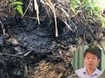 Thừa nhận dầu loang nhưng Tổng giám đốc nước sạch sông Đà vẫn khẳng định nước có mùi do hàm lượng clo cao