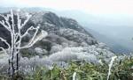 bang-gia-o-to-vinfast-thang-82019-xe-re-nhat-gia-395-trieu-dong