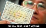 he-thong-treo-o-to-hu-hong-tuyet-doi-khong-duoc-bo-qua-dau-hieu-canh-bao-truoc