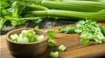 Cần tây vừa là món ăn ngon bổ vừa là thuốc chữa bệnh nhưng cấm kỵ ăn với những thực phẩm này