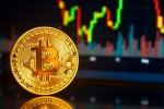 Điều gì khiến giá bitcoin tăng điên cuồng, cao chưa từng thấy?
