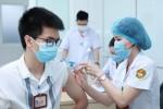 Tất cả những người từ 18 tuổi trở lên ở TP.HCM đều được tiêm vaccine COVID-19