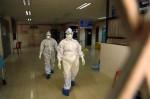 'Rùng rợn' virus từ dơi gây ch.ết người khiếp hơn Covid-19, tiềm năng thành đại dịch: Không vaccine, không thuốc chữa