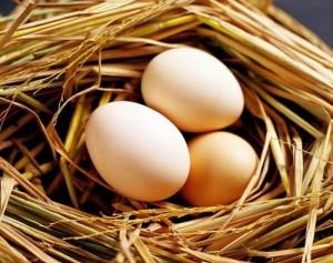 11 thực phẩm tuyệt đối KHÔNG kết hợp với trứng vì cực hại sức khoẻ