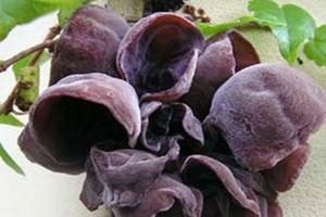 Top 4 thực phẩm hàng đầu giúp ngăn ngừa độc tố cho cơ thể