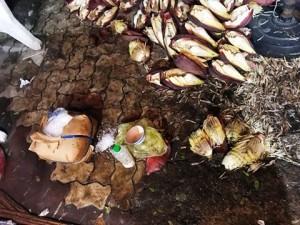 'Clip: Bắt quả tang hàng trăm cân bắp chuối bào ngâm trong hóa chất độc hại