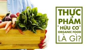 Giá nào cho thực phẩm sạch, thực phẩm hữu cơ?