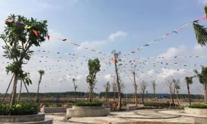 'Nối gót' cơn sốt đất TP.HCM, giá đất Đồng Nai, Long An cũng 'nổi sóng'