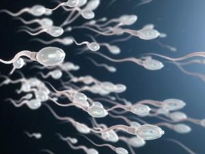 Thử nghiệm gel tránh thai cho nam giới, chỉ cần thoa lên vai