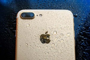 Sốc: iPhone vẫn sống sót sau 48 giờ dưới lòng đại dương
