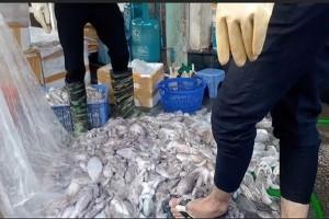 Người tiêu dùng lo lắng sau vụ phát hiện hải sản được tẩy rửa hóa chất