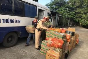 Bắt giữ xe tải vận chuyển hơn 2 tấn hoa quả Trung Quốc vào Việt Nam