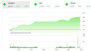 Đưa vào diện cảnh báo, cổ phiếu HAG vẫn tăng trần giúp tài sản bầu Đức tăng gần 270 tỷ