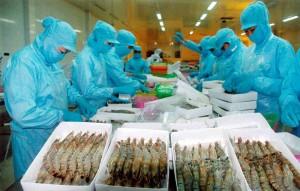 Mỹ bất ngờ giảm mạnh thuế chống bán phá giá cho tôm Việt Nam