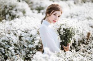 """3 điểm chụp ảnh với cúc họa mi đẹp """"mơ màng"""" trong ngày thu se lạnh ở Hà Nội"""