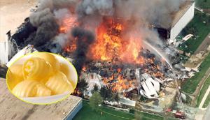 Khó mà tin những miếng bơ thơm ngon có thể gây hỏa hoạn khủng khiếp