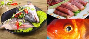 Không riêng gì mật, cá còn nhiều bộ phận gây nguy hiểm cho người ăn