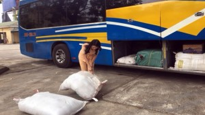 Bắt giữ xe ô tô khách chở 250 kg bì lợn 'bẩn'