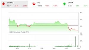 HAGL Agrico lỗ ròng hơn 220 tỷ, tài sản Bầu Đức vẫn tăng lên mốc 3.400 tỷ đồng