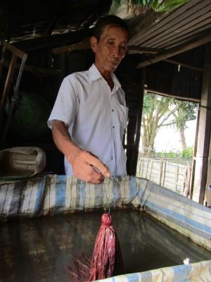 Lạ mà hay: Nuôi lươn bán trứng mà lời cả trăm triệu mỗi năm