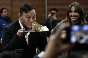 Một khách hàng chi hơn 2 tỷ đồng để mua khối nấm cục chưa đến 1 kg nhưng bị cho là