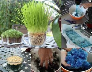 """""""Tiện tay"""" vứt bỉm của con ra vườn, mẹ trẻ kinh ngạc khi 1 tuần sau rau mọc tốt um"""
