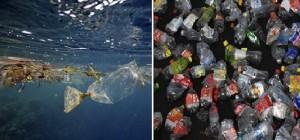 Cảnh báo: Đến 2050, chất thải nhựa đổ ra đại dương sẽ nhiều hơn cả lượng cá biển