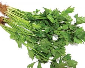 Đây chính là 4 loại rau ngậm nhiều hóa chất nhất nhưng nhà nào cũng hay ăn