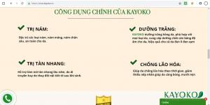 Cty TNHH XNK và đầu tư Thông Thái lưu hành chui, 'thổi phồng' công dụng sản phẩm KAYOKO PLUS?
