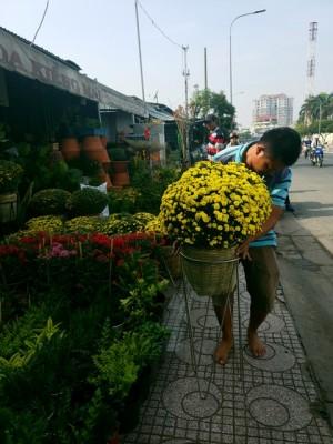 Hoa Tết: Hoa kiểng độc, lạ ồ ạt đổ về chợ lãng mạn nhất Sài Gòn