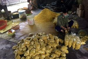 Phát hoảng cơ sở trộn lưu huỳnh và chất tạo màu vào gần 1 tấn củ riềng